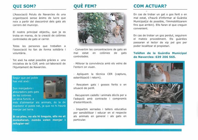 ASSOCIACIÓ ELS PELUTS C7_2017-3_Página_2.jpg