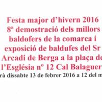 demostració baldufers C100_2016-1.jpg