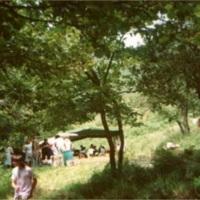 Campaments 1992_7005