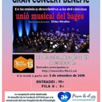 concert benèfic unió musical del Bages C77_2018-3.jpg